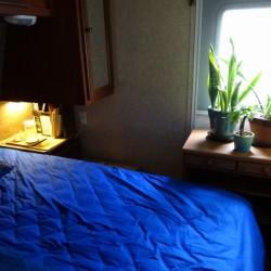 ベッドルームの観葉植物8