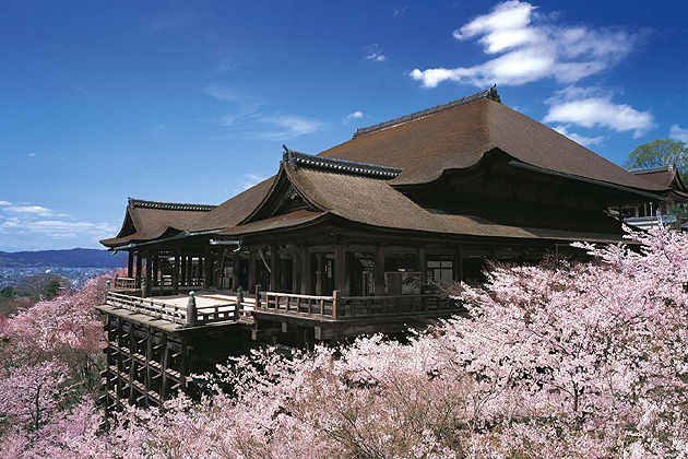 京都の桜名所