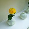 インテリアに取り入れたい9つのお花♪あなたならどうやって飾りますか?