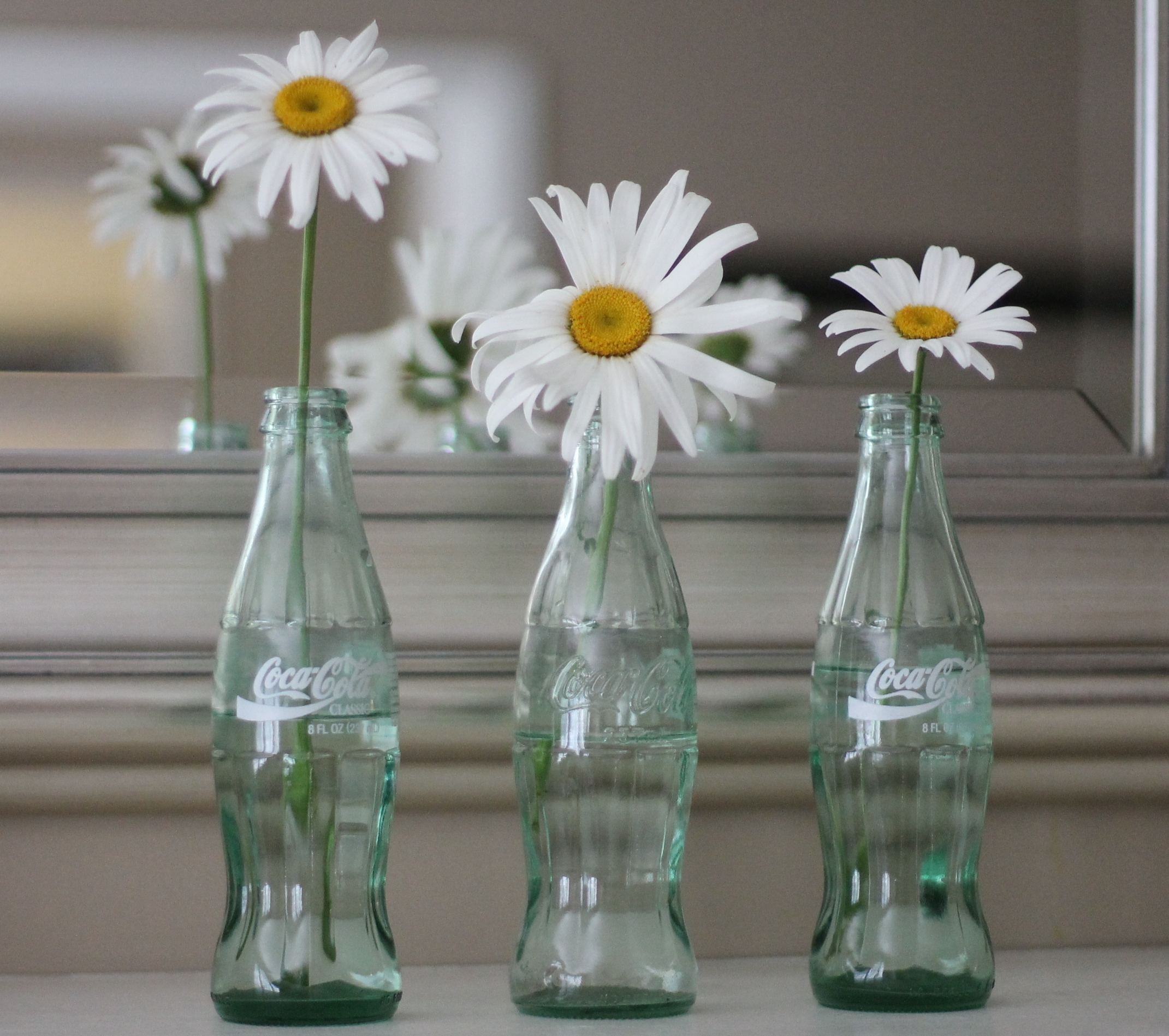 coke-bottles-white-daisies-trilogy-against-mirror