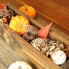 秋を感じるおしゃれなインテリアの作り方6選